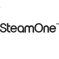 precios Plancha vapor Vertical Steam One ofertas